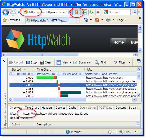 HttpWatch Home Page Access with HTTPS